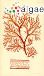 Rhodymenia preissiana Sonder