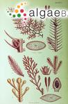 Delisea elegans J.V.Lamouroux
