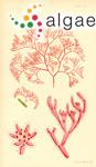 Bornetia binderiana (Sonder) Zanardini