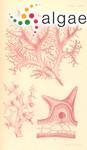 Gloiocladia halymenioides (Harvey) R.E.Norris