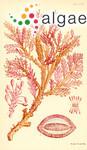 Ptilophora prolifera (Harvey) J.Agardh