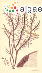Gigartina disticha Sonder