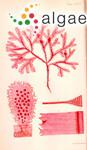 Delesseria denticulata Harvey