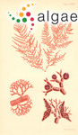 Callithamnion larcinum Harvey