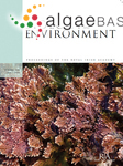 Corallina officinalis Linnaeus