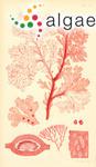 Nitophyllum curdieanum Harvey