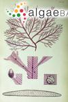 Delesseria conferta (R.Brown ex Turner) C.Agardh