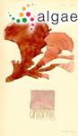 Peyssonnelia australis Sonder