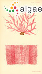 Delesseria hypoglossoides Harvey