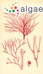 Corynospora licmophora (Harvey) E.Kylin