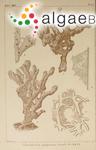 Ceratodictyon spongiosum Zanardini