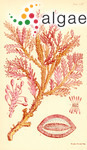 Gelidium proliferum Harvey