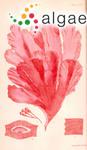 Myriogramme gunniana (J.D.Hooker & Harvey) Kylin