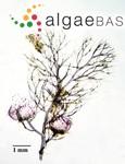 Bostrychia moritziana (Sonder ex Kützing) J.Agardh